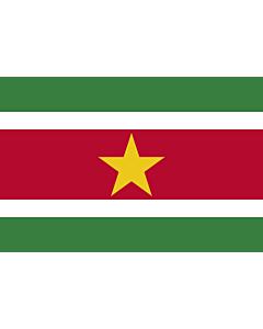 Fahne: Suriname