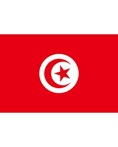 Fahne: Tunesien