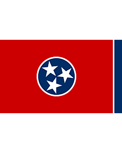 Fahne: Tennessee