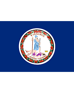 Fahne: Virginia