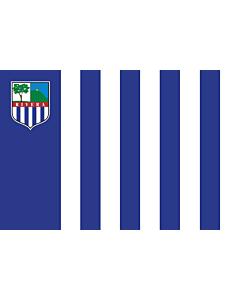 Fahne: Rivera
