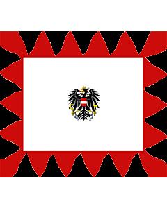 Fahne: Tander für ein General von Österreich